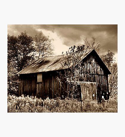 Sepia Barn Photographic Print