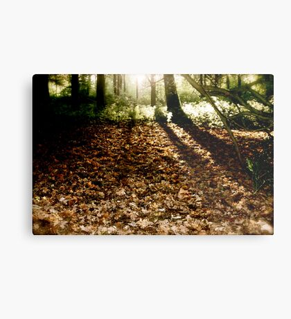 Walkers with the Dawn Metal Print