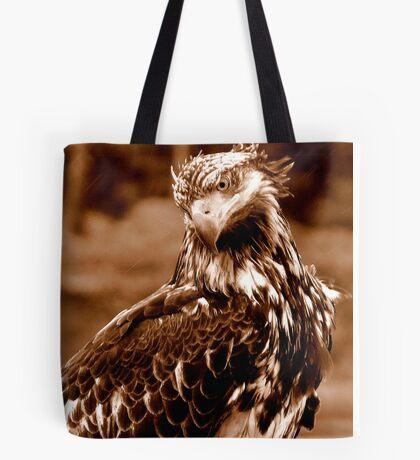 Young Bald Eagle Tote Bag