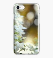 Frost of Spring iPhone Case/Skin