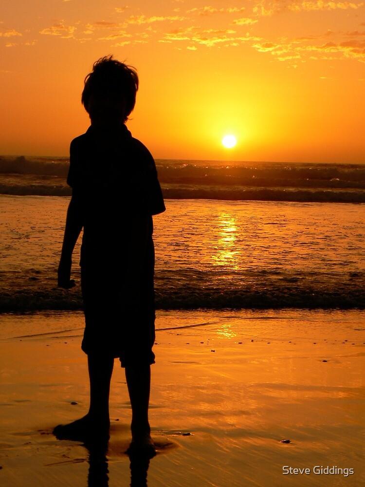 Sunset silhouette by Steve Giddings