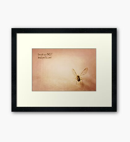 ~ Small, but NOT insignificant ~ Framed Print
