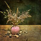 Grasses and Stones by Barb Leopold