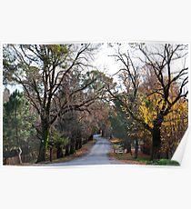 Beyers Avenue - Hill End NSW Australia Poster
