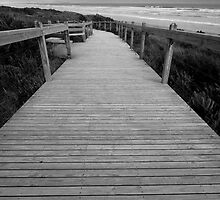 Sandy Point Boardwalk by Will Hore-Lacy