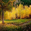 Autumn  by velkovski