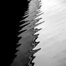 Bridge reflection by Bluesrose