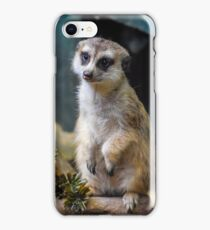Huh? What'd you Say?? iPhone Case/Skin