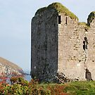 Minard Castle, home of the Ashes, ancestors of Gregory Peck. by Pat Herlihy