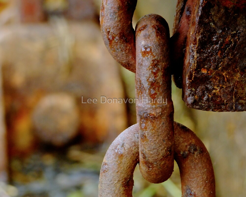 Linked...Hold Fast by Lee Donavon Hardy