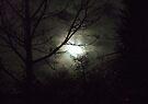 Sleepy Hollow by Chris Goodwin