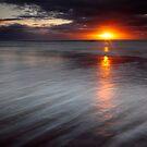 Burn by James Coard
