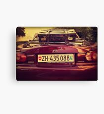 Luggage Canvas Print