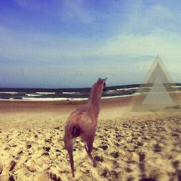 Ethereal Llama by bunhuggerdesign