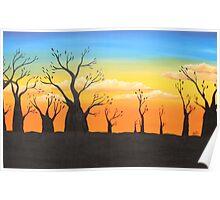 boab sunset Poster