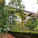 Dean Bridge, Edinburgh by Sandra Cockayne