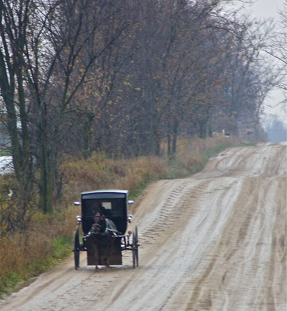 Amish Country by Marcella Hadden