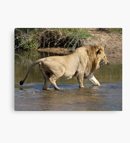 Majingilane Male Crossing River Canvas Print