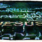 The Doors by Jeri Garner