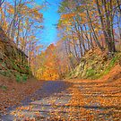 A Fall Drive by ECH52