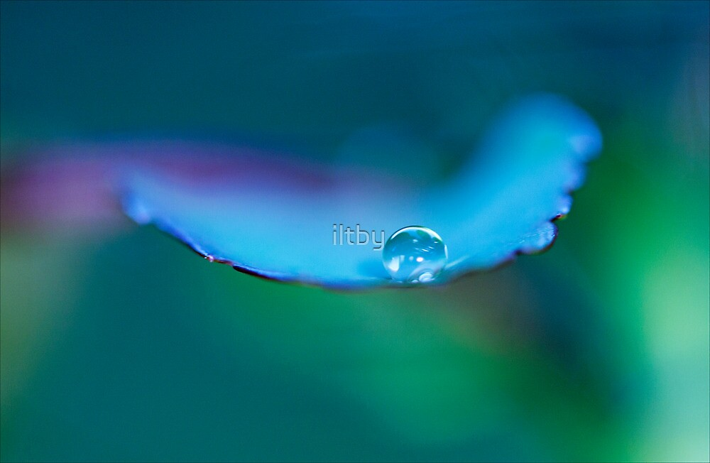 Ethereal by iltby
