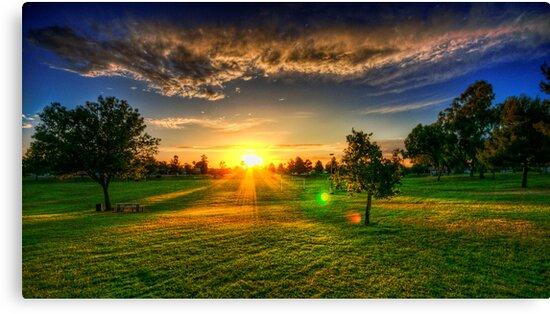 Sunset At The Park II by Saija  Lehtonen