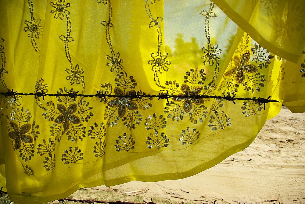 Wired for Yellow, Dhatura, Nepal by AlliD