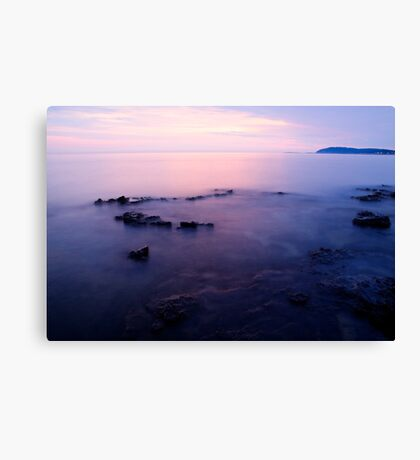 The beautiful Istrian coastline  Canvas Print