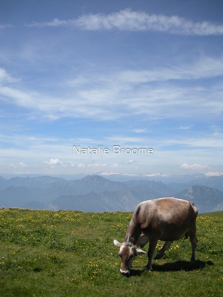 Monte Baldo by Natalie Broome