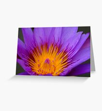 Cambodian Flower Greeting Card