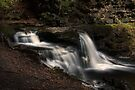 Cayuga Falls (in Autumn) by Aaron Campbell