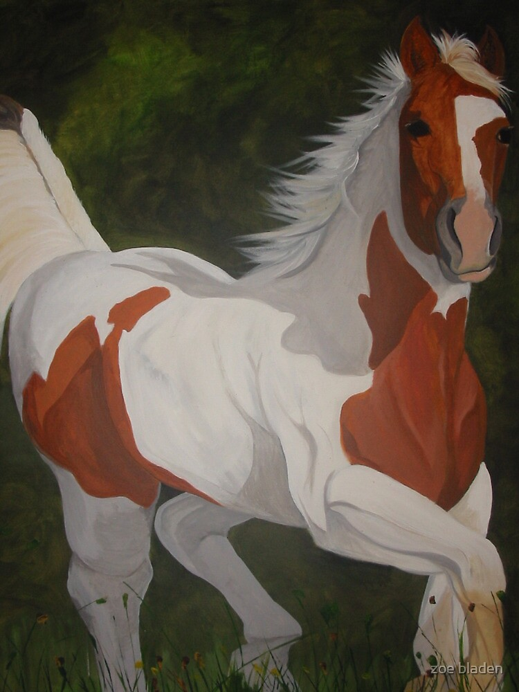 paint horse by zoe bladen