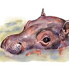 Hippo in Watercolor by Denise Soden