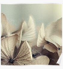hydrangea~ Poster