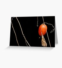 Seed of Japanese Snake Gourd Greeting Card