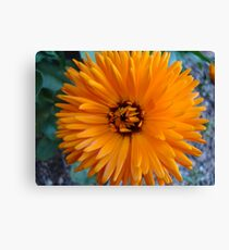 charged Canvas Print