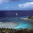 In the British Virgin Islands by Bertspix1