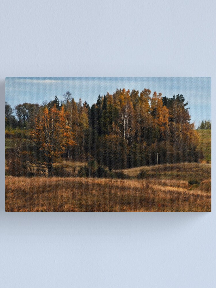 Alternate view of Coppice in autumn (Autumn 2010) Canvas Print