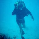 SCUBA DIVING IN THE BVIs by Bertspix1