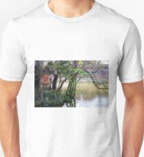 Hue shrine Unisex T-Shirt