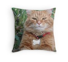 Warm and Fuzzy Throw Pillow