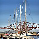 The Marina And The Forth Bridge, Scotland by Sandra Cockayne