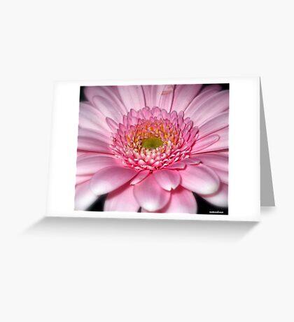 Ice Pink! Greeting Card