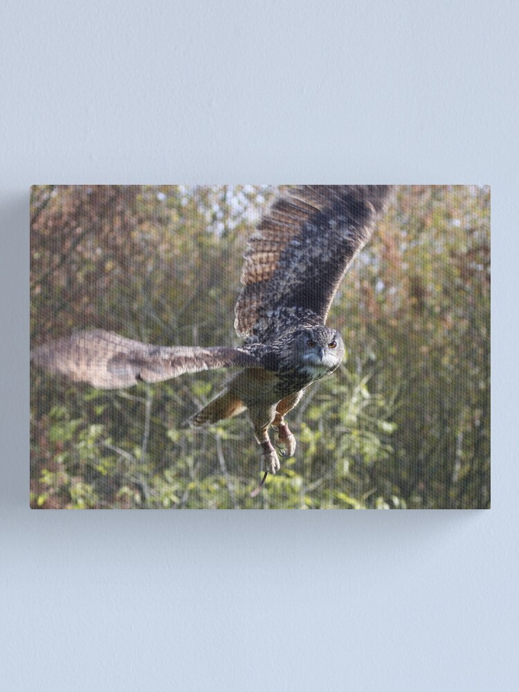 Alternate view of Eagle Owl Canvas Print