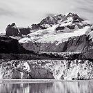 Johns Hopkins Glacier 2010 by Frank Bibbins