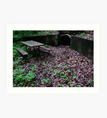 Secluded in the Park Art Print