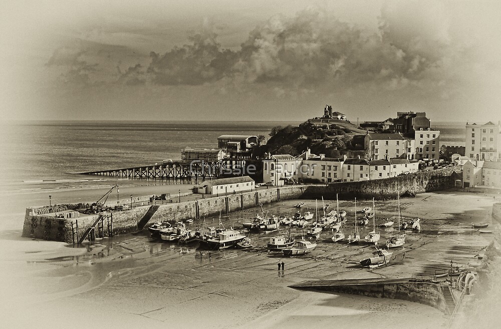 Tenby Harbour, Tenby, Pembrokeshire, South Wales,UK by Chrissie Taylor