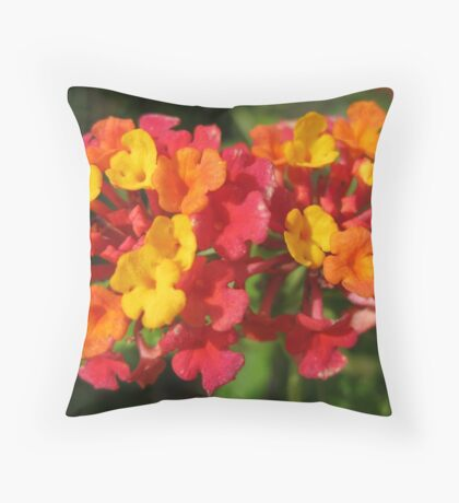 Flowers in France Throw Pillow