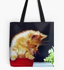 Cat On Red Tin Tote Bag