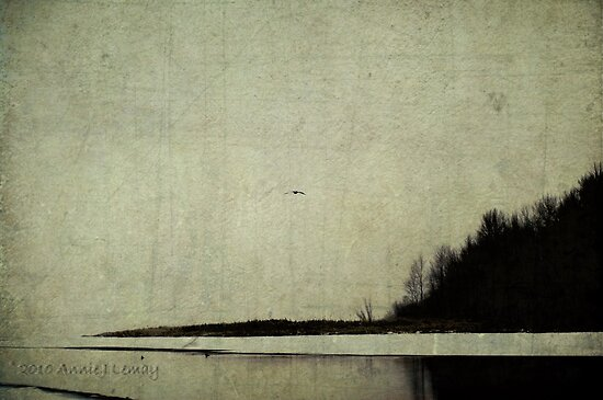 Winter's Shores by Annie Lemay  Photography